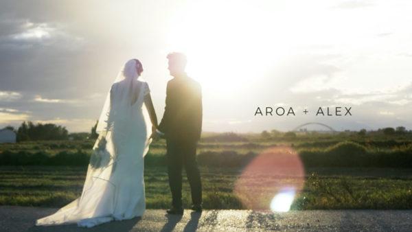 Video de boda La Alquería y San Cayetano - videografos de boda zaragoza - NANANA VIDEO
