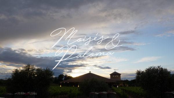 Vídeo de boda en Viñedos Rhey - Moisés y Paloma