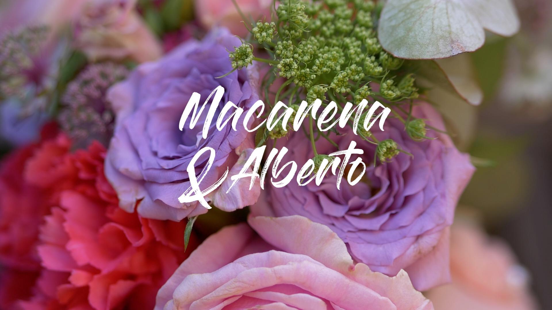 Vídeo de boda en Seminario San Carlos de Borromeo y NH Collection Gran Hotel de Zaragoza. NANANAVIDEO.